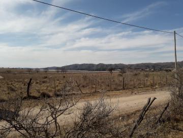 Fracción de Terreno 2 hectáreas con vista al Lago Los Molinos