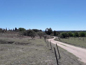 Fracción de 8.3 hectáreas